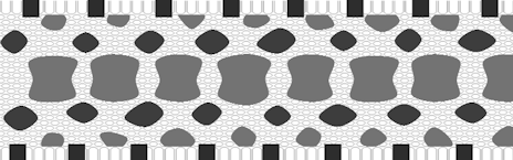 dorsal saddles with two rows of side blotches and belly checkers